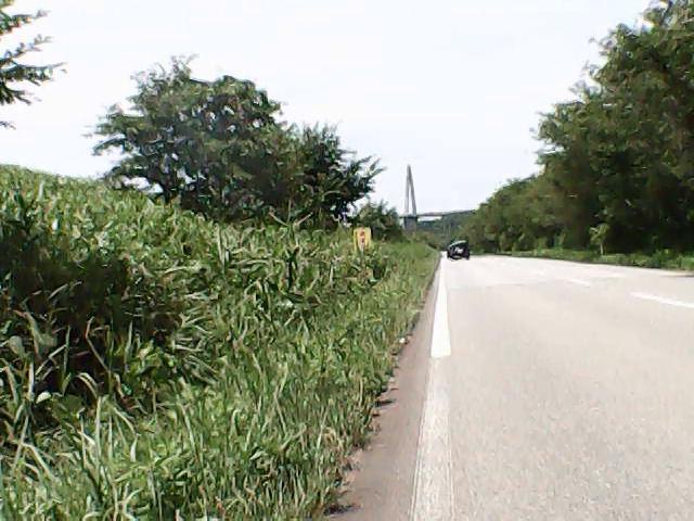 河北潟沿いの道